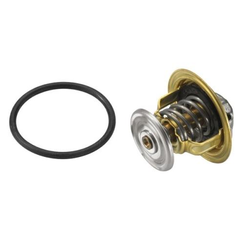 Thermostat, coolant BorgWarner (Wahler) 4820.87D AUDI SEAT SKODA VW