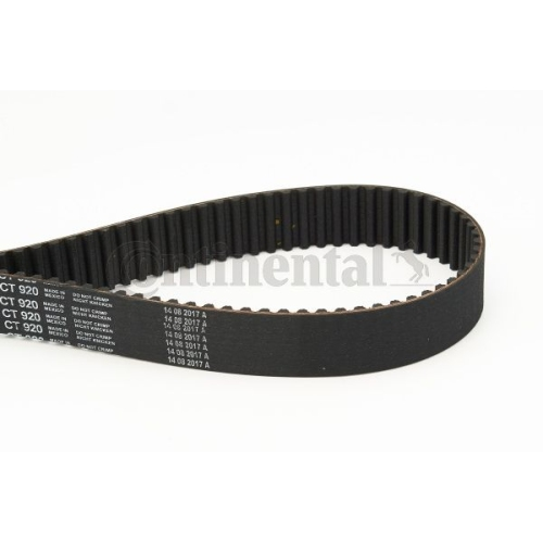Timing Belt CONTINENTAL CTAM CT920 AUDI SKODA VW