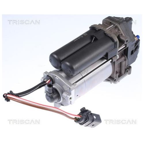 Kompressor, Druckluftanlage TRISCAN 8725 81101 TESLA