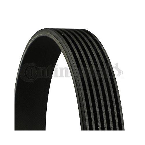 V-Ribbed Belt CONTINENTAL CTAM 7PK1076 ALFA ROMEO FIAT