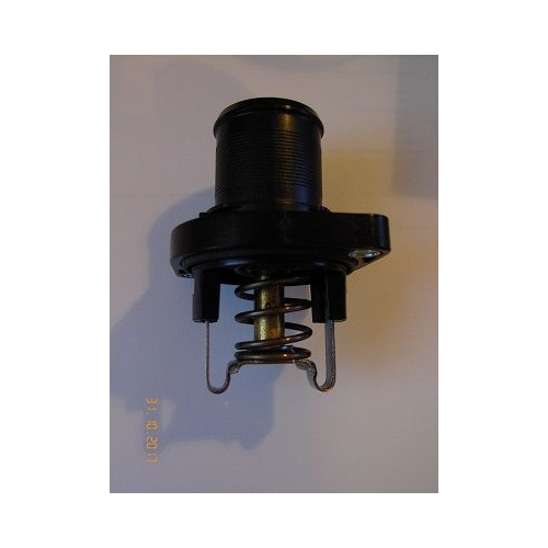 WAHLER Thermostat 3463.89D
