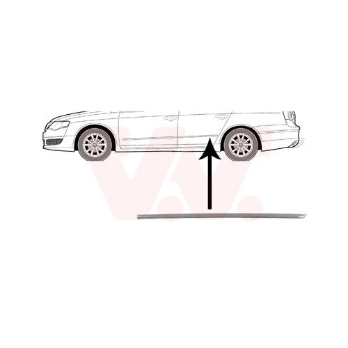 Trim/Protective Strip, door VAN WEZEL 5839405 VW