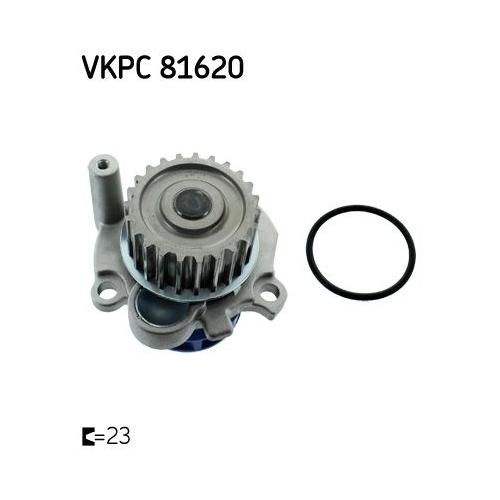 Water Pump SKF VKPC 81620 AUDI SEAT SKODA VW