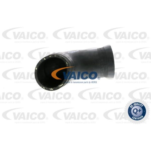 Ladeluftschlauch VAICO V10-2923 Q+, Erstausrüsterqualität AUDI SEAT SKODA VW VAG