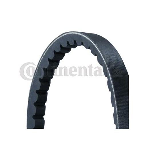 V-Belt Set CONTINENTAL CTAM 2XAVX13X1050 DAF FORD IVECO MAN MERCEDES-BENZ VOLVO