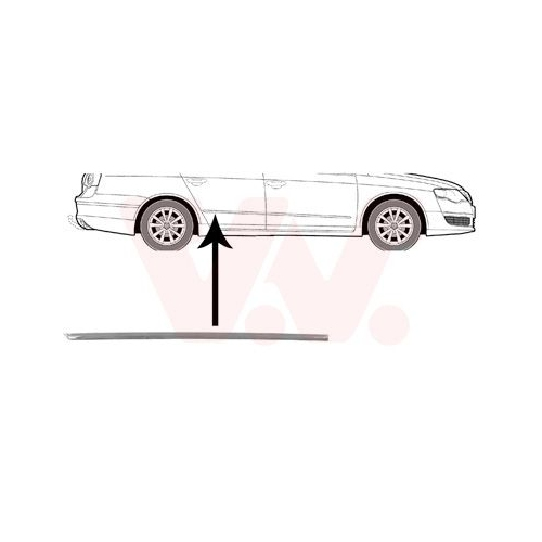 Trim/Protective Strip, door VAN WEZEL 5839406 VW