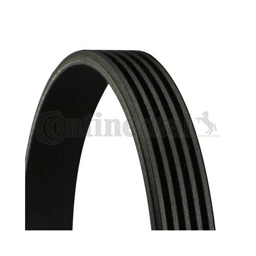 V-Ribbed Belt CONTINENTAL CTAM 5PK690 ELAST FORD