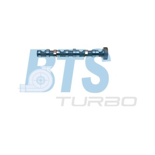Nockenwelle BTS Turbo CP10243 VW