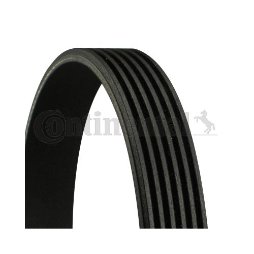 V-Ribbed Belt CONTINENTAL CTAM 6PK1019 ELAST FORD