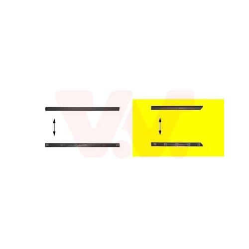Zier-/Schutzleiste, Tür VAN WEZEL 5880425 VW