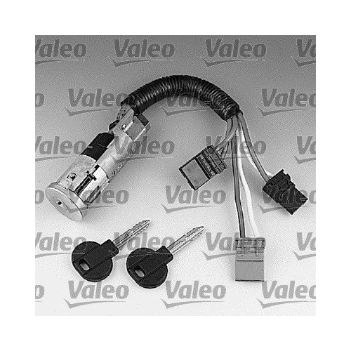 Steering Lock VALEO 252402