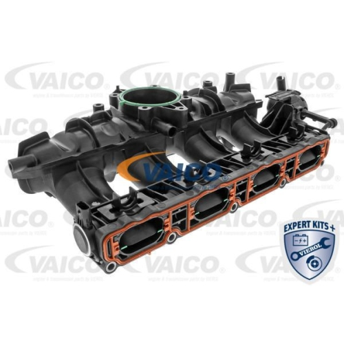 Saugrohrmodul VAICO V10-3954 EXPERT KITS + SEAT SKODA VW VAG