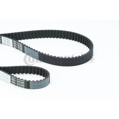 Timing Belt CONTINENTAL CTAM CT957(SET) AUDI SEAT SKODA VW