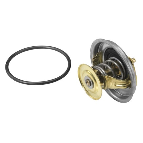WAHLER Thermostat 4116.87D1