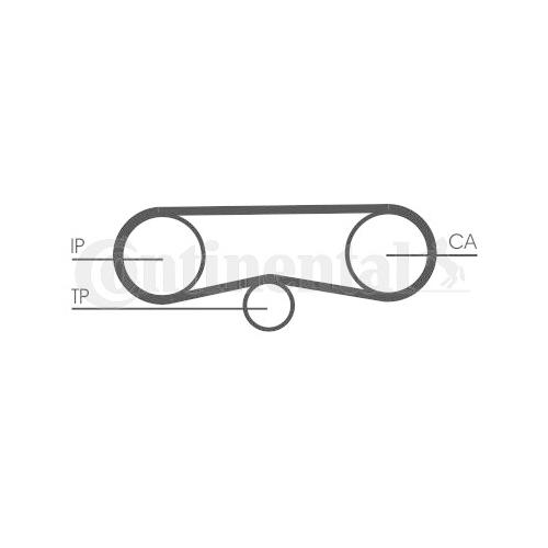 Timing Belt CONTINENTAL CTAM CT1018 AUDI SKODA VW
