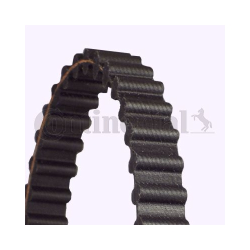 Timing Belt CONTINENTAL CTAM CT925 PORSCHE