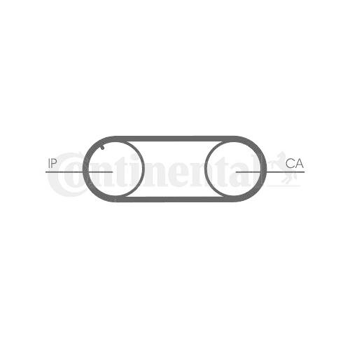 Timing Belt CONTINENTAL CTAM CT645 AUDI VW