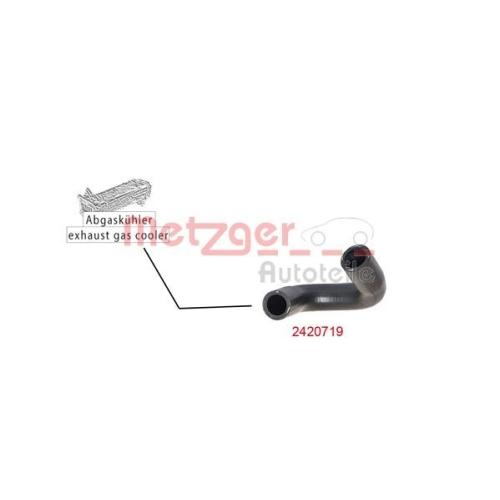 Radiator Hose METZGER 2420719 CITROËN FIAT FORD PEUGEOT TOYOTA MINI